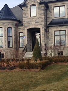 Small family seeking house in Waterdown area! NO agents