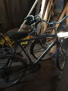 Vintage CCM 10 speed bicycles- purchased new in 1974