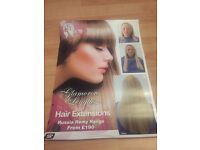 Glamorous lengths extension posters