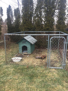 8x8 dog pen and house