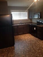 2 Bedroom Basement Suite - ALL UTILITIES + WIFI & CABLE INCLUDED