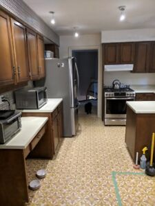 Complete Kitchen including cabinets, counter tops