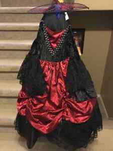 Halloween witch costume -girls size 6x Peterborough Peterborough Area image 1