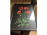 Field Poppy by Kay Adam 1984