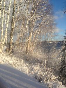 Terrain de villégiature Chute à la Savane Lac-Saint-Jean Saguenay-Lac-Saint-Jean image 8