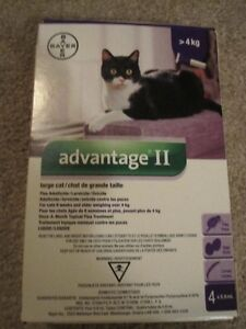Advantage II for Large Cats Topical Flea Treatment