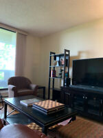 ROOMMATE WANTED to rent a room in a large two bedroom NE condo
