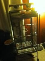 Brand new in box parrot cage