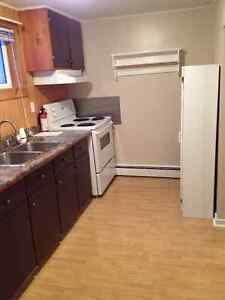 $750.00 Heat and Hot Water Included 2 Bedroom Mt. Pearl St. John's Newfoundland image 8