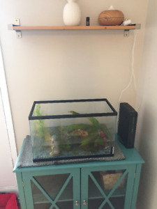 10 Gal with stand, accessories + fish