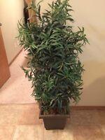 Faux plant for sale
