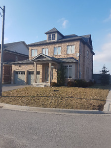 Milton- Beautiful home with basement apartment