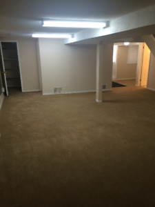 1 BEDROOM WALKOUT BASEMENT FOR RENT- AJAX