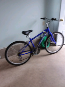 21 speed Schwinn bike for sale