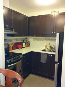 Newly renovated 2 bdrm. apt. in Crystal Beach near the water