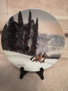 Outdoor lovers and Hunters! Beautiful Collector plates