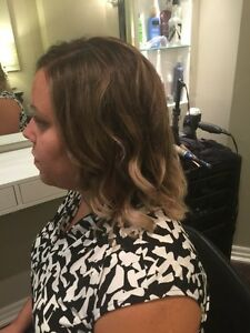 Get your Hair ready for the Holiday! $70 for a Color and Cut! Kitchener / Waterloo Kitchener Area image 1