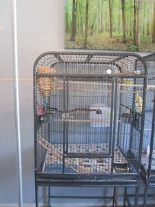 fancy large bird cage