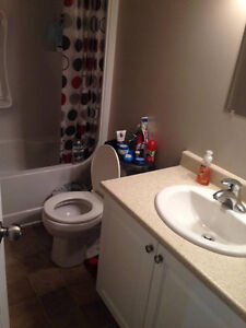 clean, great room for rent $495 Kingston Kingston Area image 3