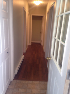 Renovated 2 Bedroom Apartment   $750.00