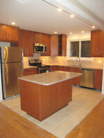 Baseline/Clyde renovated 3 bedrooms, near Algonquin College