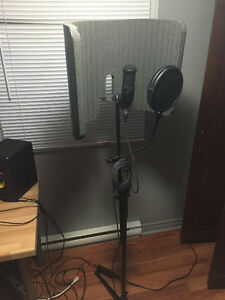 Microphone reflexion filter