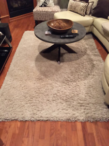 Livingroom Rug for Sale