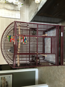 Avian Adventure Dome Top Parrot Cage