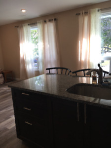 3 bedroom apartment looking for roommate