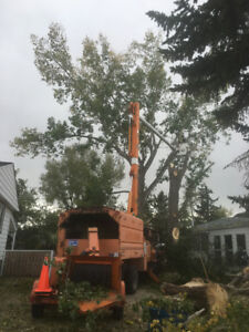 Tree services city to small town