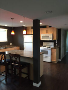 Updated 1 bdrm basement suite in College Heights