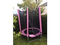 6ft Pink Plum Trampoline