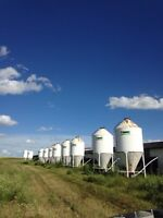 Grain bins / feed bins