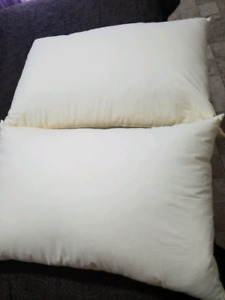 Queen Size Feather Pillows
