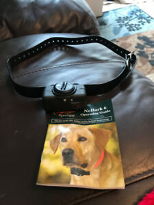 Dog Collars &  Accessories