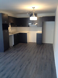31/2 style condo neuf Longueuil libre