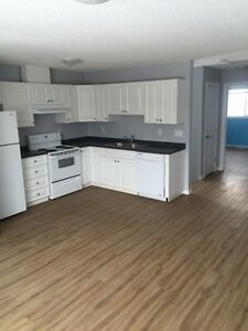 3 Bedroom 2 Bathroom + 50% off rent for the first month