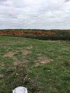200 ACRE ESTATE BUILDING LOT ACCESSIBLE TO THE GTA