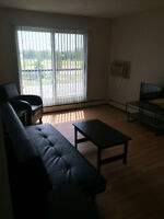 FULLY FURNISHED. September FREE, apartments from $900/month!
