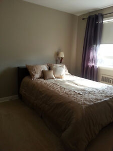 Clean & Quiet One Bedroom Apt available Jan 1st in Old South London Ontario image 7