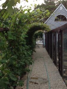 Oceanviews/House/Guest House/4-Bay Garage1500sq ft