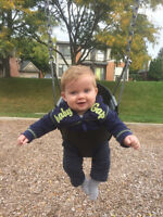Looking for a reliable live-out nanny for our 8 month old son