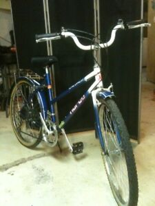 Perfect commuter bike for students!