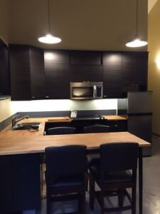 1 Bedroom Furnished Executive Studio Suite Prince George British Columbia image 2