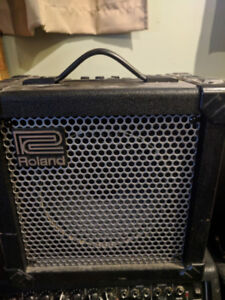 Roland and fender amp