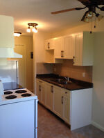 Close to Whyte Ave! Gorgeous 2 bedroom HALF PRICE for September