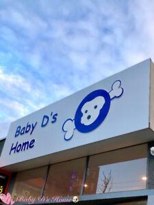 Baby D's Home dog daycare and Spa