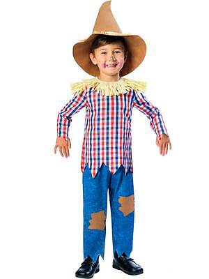 Boys Scarecrow Child Fairytale New Fancy Dress Costume + Hat Kids Book Week Day (Scarecrow Kostüme Boy)