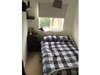 Brownswood - Large Single Room in 2 bed shared semi detached house
