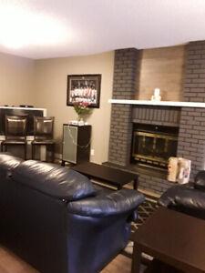 2 Level basement suite